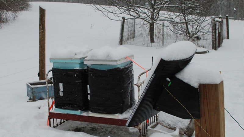 Winterized hives
