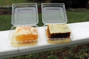 Honeycomb in open containers