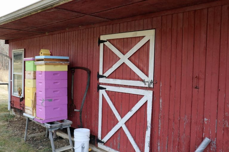 Is Beekeeping Agriculture?