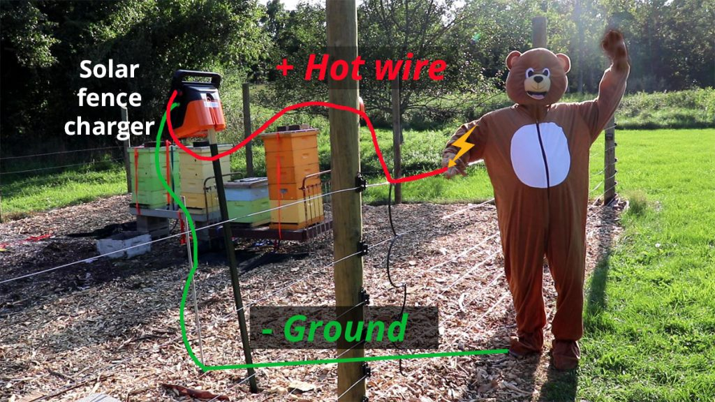 Image of how an electric fence delivers a shock with a completed circuit.