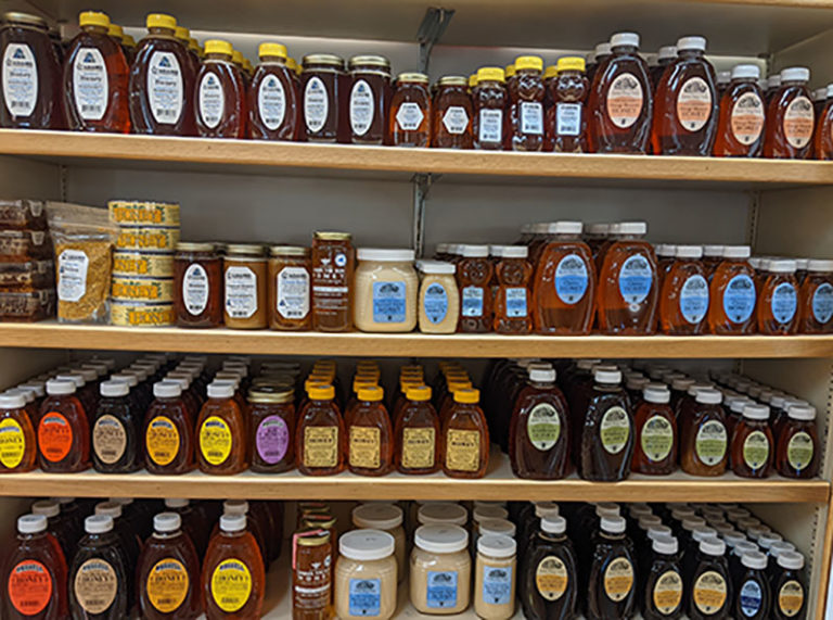 What Is Honey? (A Guide For Beginning Beekeepers)